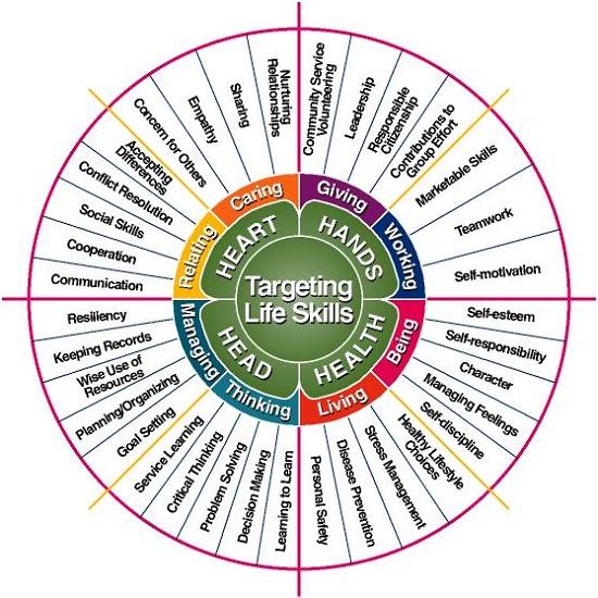 Targeting Life Skills wheel