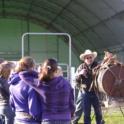 Horse Proj